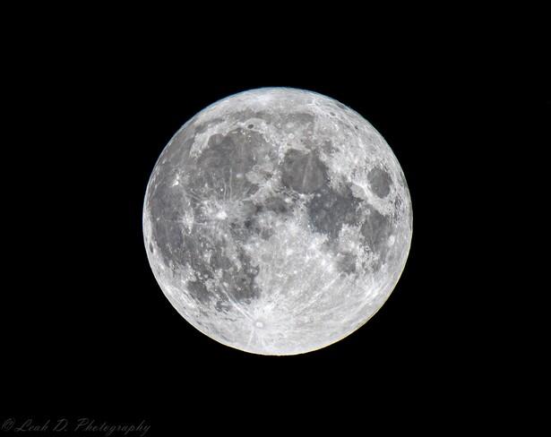 Last night's Buck Moon. 🌕 Carleton Place, ON