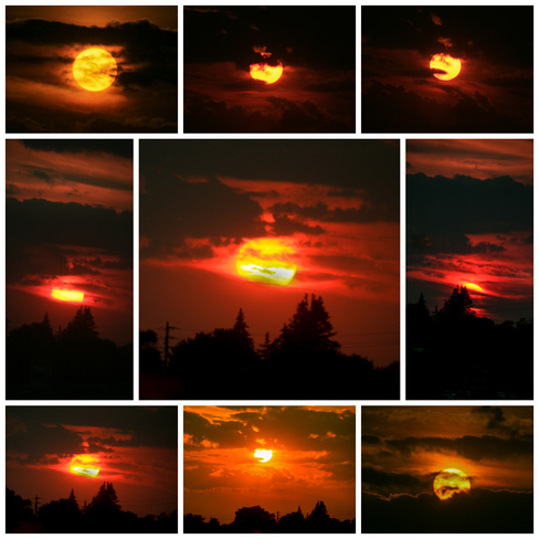 Summer Sunset. Scarborough, Toronto, ON