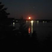 Blood moon over Tiverton
