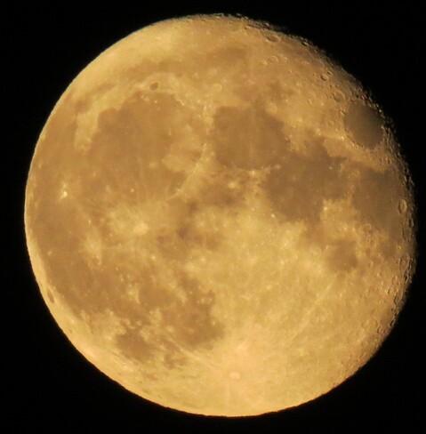 beautiful full moon last night Howdenvale, ON