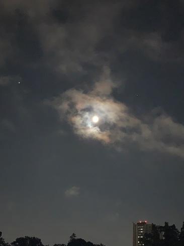Buck Moon Waterloo, ON