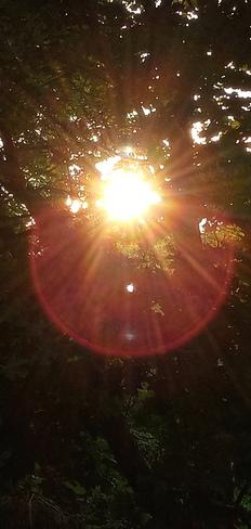 Monday's Sunset Pointe-Claire, QC