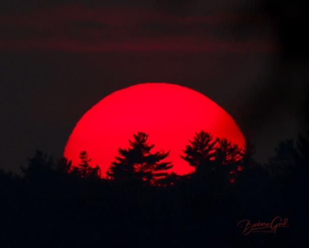 Smokey haze sunset Tarbutt and Tarbutt Additional, Ontario, CA