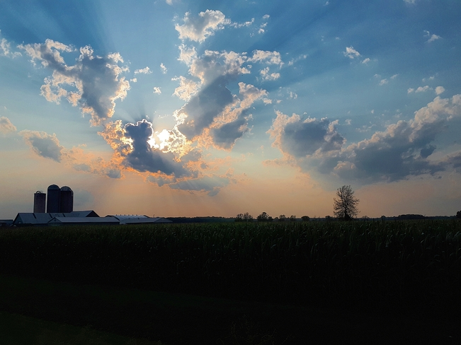Beautiful Evening Sunset Iroquois, ON