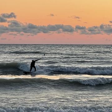 August Surf
