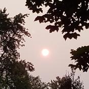 Morning Sun under Hazy Sky