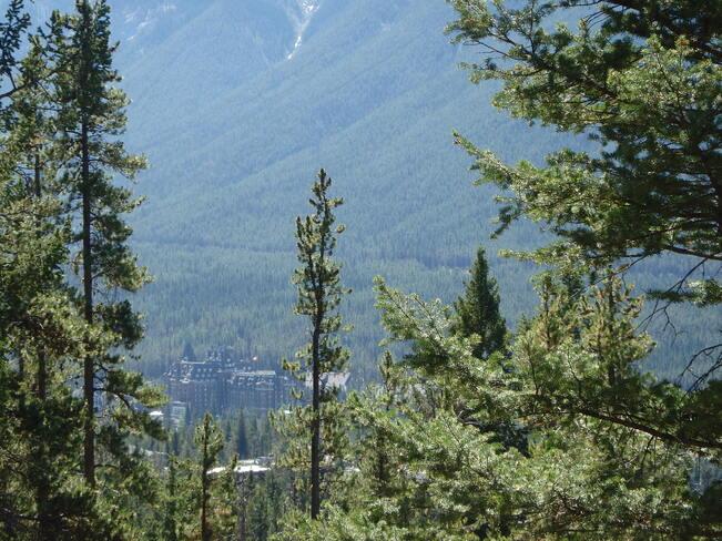 Banff Parkway Rocky Mountain High Banff, AB