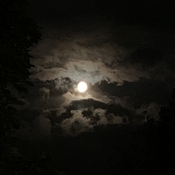 Blue moon in Kanata