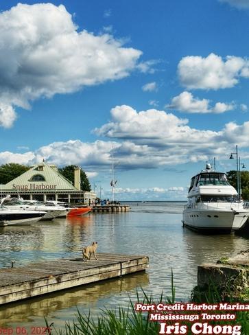 Sept 7 2021 24C Happy Tuesday!:) Beautiful day - Port Credit Marina Mississauga Mississauga, ON