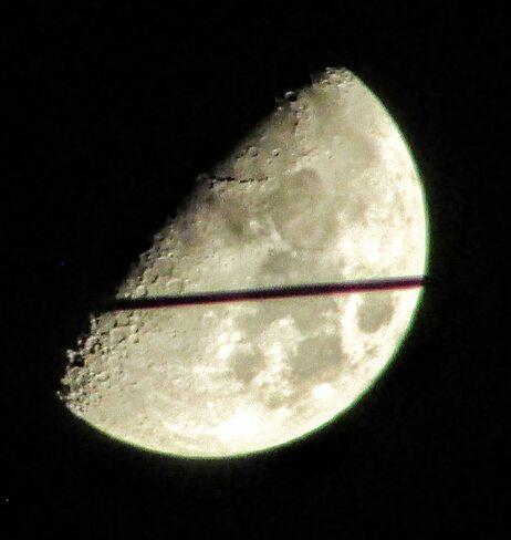 Sliced half moon Ottawa, ON