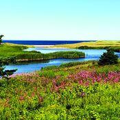 Northeast shore of PEI