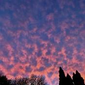 Sunset clouds last night!!