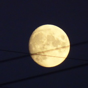 Almost Harvest Full Moon