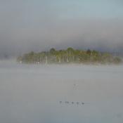 A Beach In Fog