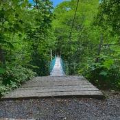 Hopewell Foot Bridge