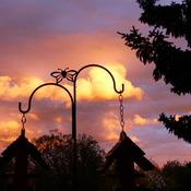 Sunset in Red Deer