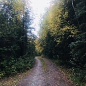 Beautiful Rainy Fall Day