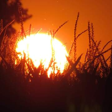 Coucher de Soleil en feu