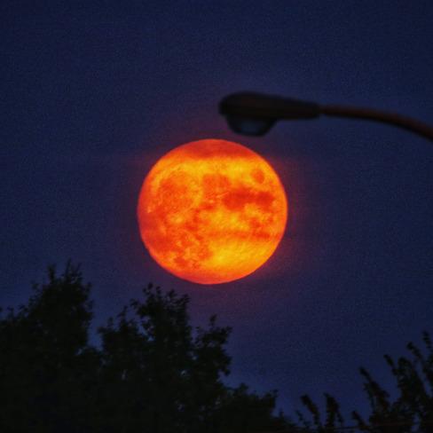 La Moon Windsor, ON