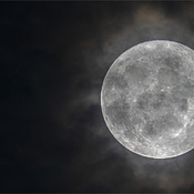 Full moon last night!