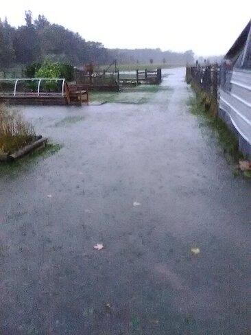 STOP THE RAIN! Mennonite Corner, ON