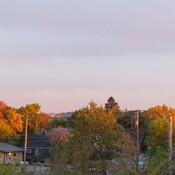 Reflective Fall Colors