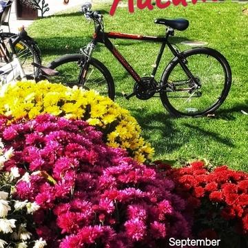 Sept 24 2021 Hello Autumn - Happy Friday!:) Thornhill