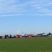 Farmhouses and Mt. Baker