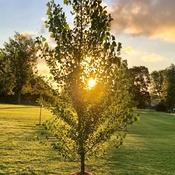 Morning sunshine!!!