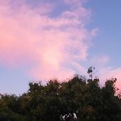Beautiful Evening Sky