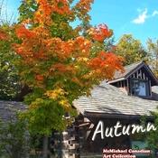 Sept 26 2021 Beautiful Autumn - McMichael Canadian Art Collection - Vaughan