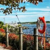 Sept 28 2021 Autumn - Beautiful day -Trillium Park Waterfront Downtown Toronto