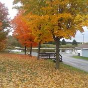 Gray's Creek