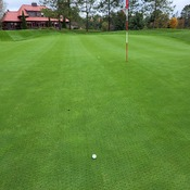 Fall Golf in Muskoka