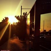 Oct 20 2021 18C Good evening!:) Autumn Sunset glory in Thornhill
