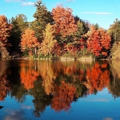 Oct 21 2021 The beauty of Autumn - Bond Lake in Richmond Hill