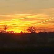 Osgoode Sunset
