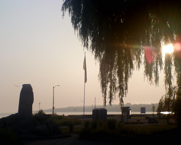 Wiarton Willy at sunrise