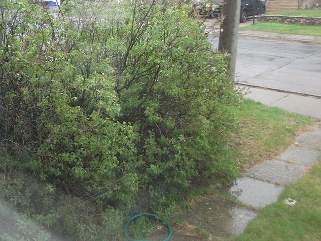 Wet day in Sudbury Sudbury, Ontario Canada