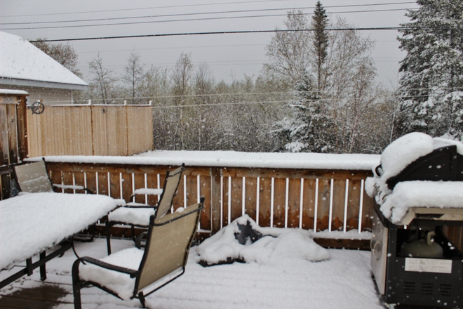 Victoria Day weekend weather Grand Falls-Windsor, Newfoundland and Labrador Canada