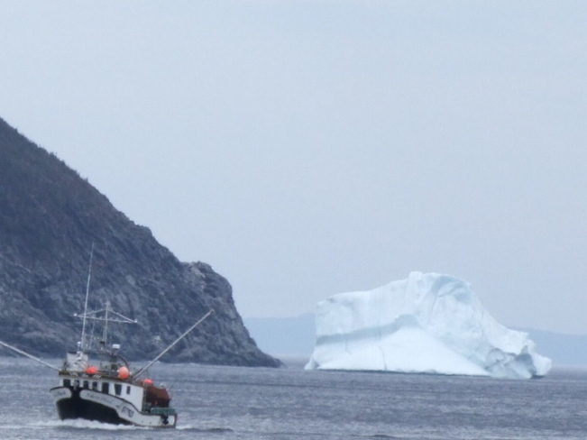 Boat and Icebergs La Scie, Newfoundland and Labrador Canada