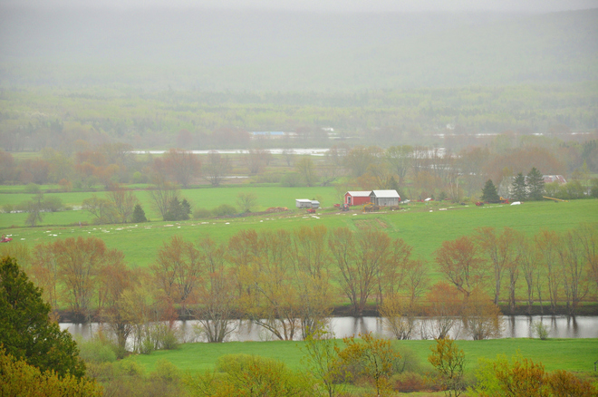misty Norton, New Brunswick Canada