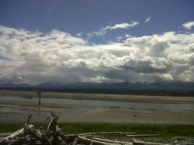 Another angle, low tide under clouds. Courtenay, British Columbia Canada