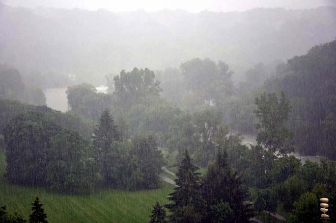 Pouring Toronto, Ontario Canada