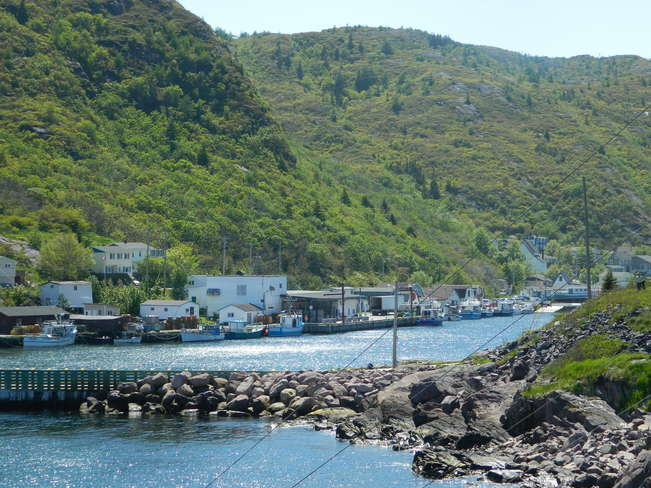 Gorgeous Day on Father's Day Petty Harbour-Maddox Cove, Newfoundland and Labrador Canada