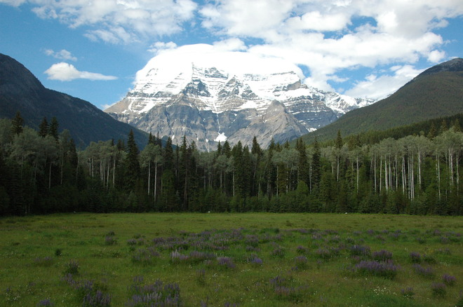 Mountain Beauty Mount Robson, British Columbia Canada