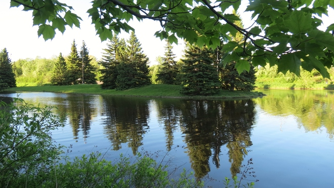 Beautiful Day in Centennial Park Moncton, New Brunswick Canada