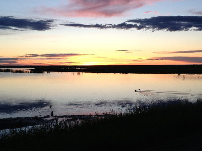 Serenity Outlook, Saskatchewan Canada
