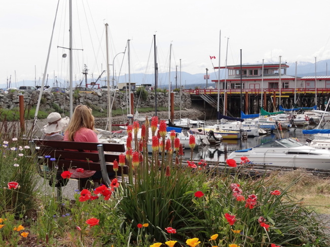 Sitting by the dock on the bay Comox, British Columbia Canada