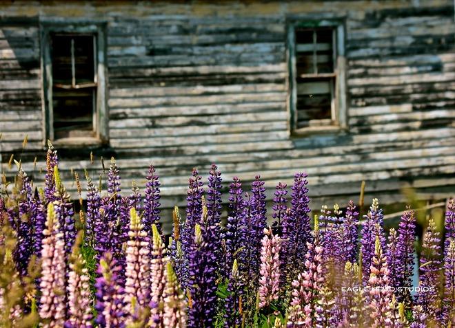 Hunts Point Liverpool, Nova Scotia Canada